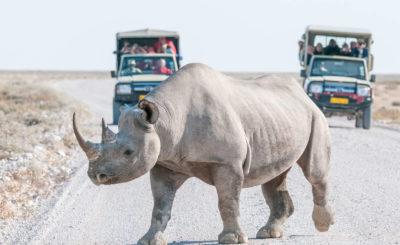 Tour in Namibia con auto a noleggio